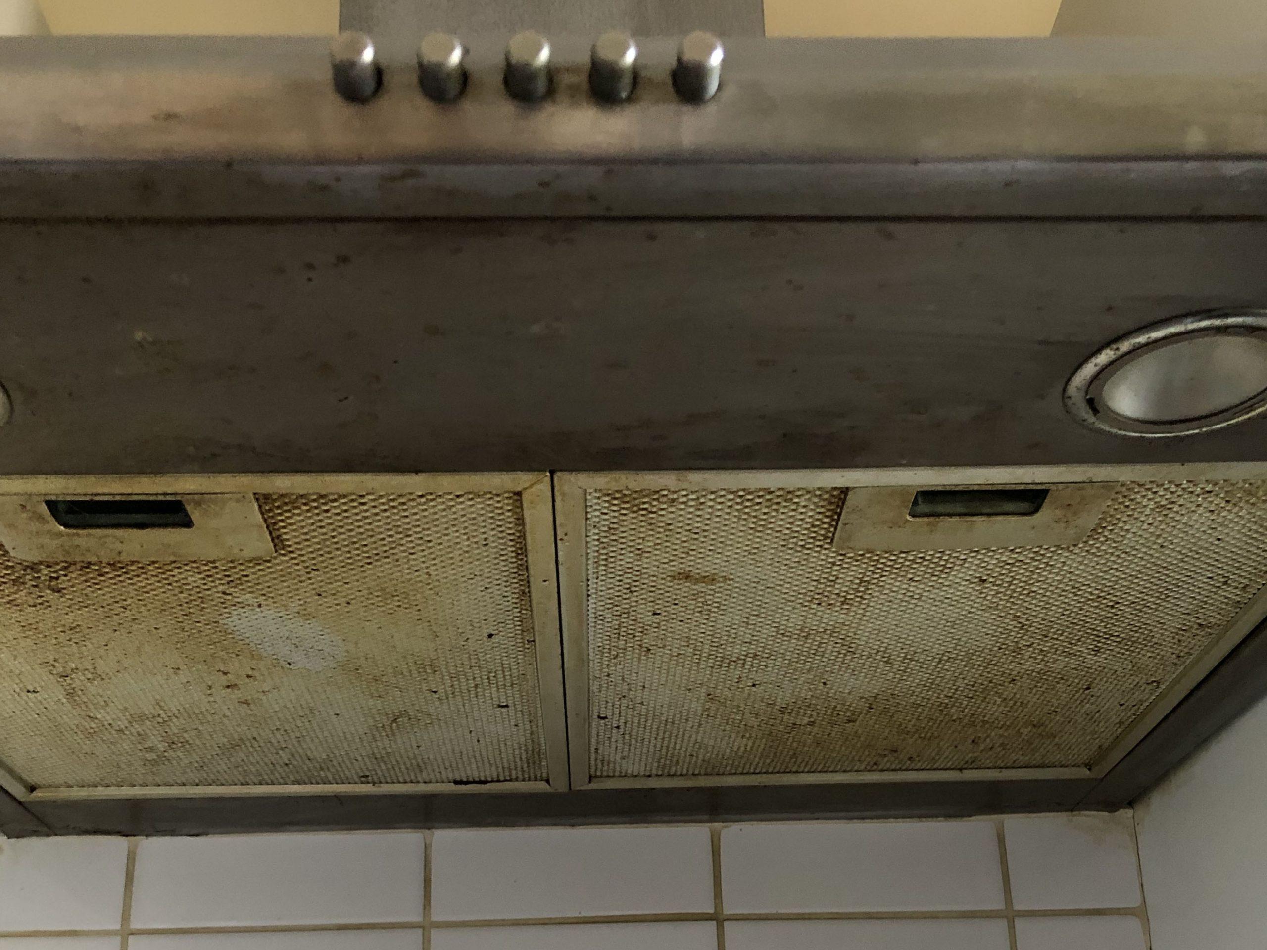 Dirty oven extractor hood